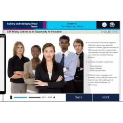 Virtual Teams eLearning Course
