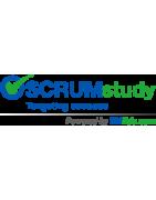 SCRUMstudy - eLearning Online